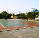 公司篮球场